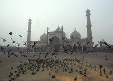 Jama Masjid清真寺 免版税库存照片