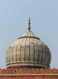 Jama Masjid,老德里 免版税库存照片