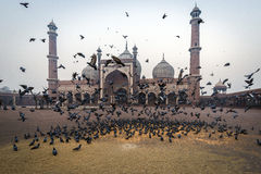 Jama Masjid, Delhi, India Stock Images