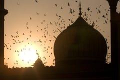Jama Masjid Mosk Stock Images