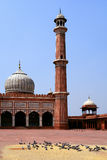 Jama Masjid Mosque. Old Delhi, India Royalty Free Stock Photography
