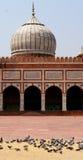 Jama Masjid Mosque Stock Photos