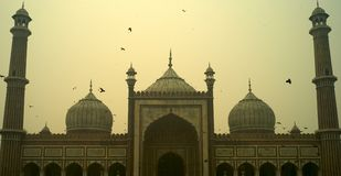 Jama Masjid Mosque towers Royalty Free Stock Photo