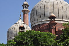 Jama Masjid, New Delhi, India. Architectural detail. The main cupolas of the Jama Masjid mosque in New Delhi, India. The biggest indian mosque, Mughal muslim stock photography