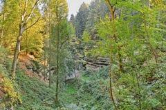 Jama między drzewami jesienni lasy w Kokorinsko krajobrazu terenie w republika czech Zdjęcie Royalty Free