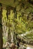 Jama w niah parku narodowym Zdjęcie Royalty Free