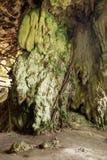 Jama w niah parku narodowym Fotografia Royalty Free
