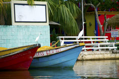 Jamaïca, Negril, Zwarte rivier, kleurrijke boten Stock Afbeeldingen