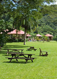 Jamaica. Benches for rest in park on a green lawn Stock Photo