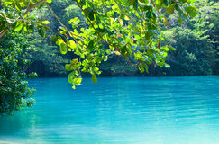 Jamaica. A Blue lagoon. (Popular after shooting the film with same name stock photos