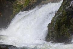Jamaica. Dunn's River waterfalls Royalty Free Stock Image