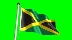 Jamaica flag. (Loop & green screen royalty free illustration