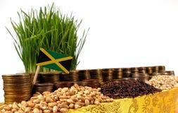Jamaica flagga som vinkar med bunten av pengarmynt och högar av vete Fotografering för Bildbyråer
