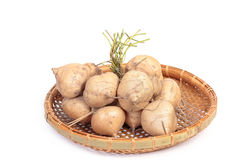 Jamaica or Mexican yam. Over white background Stock Images
