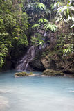 Jamaica river Royalty Free Stock Photos