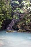 jamaica rzeka Zdjęcia Royalty Free
