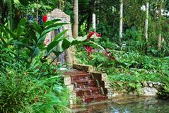 Jamaica's Gardens Royalty Free Stock Photography