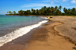jamaica skälla för den jamaica för fartygkustdagen nationellt sandigt soligt ligganden Arkivfoto