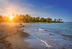 jamaica skälla för den jamaica för fartygkustdagen nationellt sandigt soligt ligganden Arkivbild
