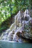 Jamaica. small river waterfal Royalty Free Stock Photo
