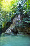 Jamaica. Small waterfalls in the jungle Royalty Free Stock Photo