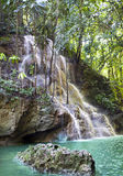 Jamaica. Small waterfalls in the jungle Royalty Free Stock Images