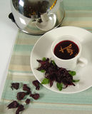 Jamaica tea. Rose of jamaica hot tea stock image