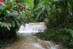 Jamaica Waterfall Stock Photo