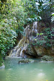Jamaica.  waterfalls.tropical a landscape Royalty Free Stock Photos