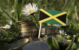 Jamaican flag with stack of money coins with grass. And flowers royalty free stock images