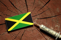 Jamaican flag on a stump with syringe injecting money. In flag royalty free stock photos