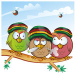Jamaican owl group cartoon. On sky background royalty free illustration