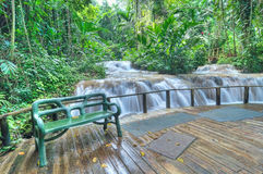 Jamaican waterfall park Royalty Free Stock Image