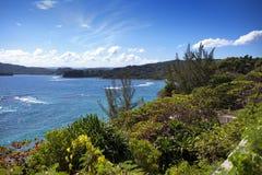 Jamajka dzień Jamaica krajobrazowy gór morze pogodny Zdjęcie Royalty Free