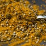 Jamajski curry Zdjęcia Stock