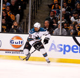 Jamal Mayers San Jose Sharks Royalty Free Stock Photography