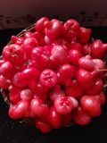 Jambakka或新鲜蒲桃的农场 免版税库存照片