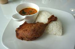Jambe cuite à la friteuse de canard avec la portion thaïlandaise de cari de rouge de style avec du riz blanc photo libre de droits