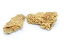 Jambe de poulet frit et aile de poulet frit Image libre de droits