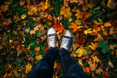 Jambes adolescentes dans des espadrilles dans des feuilles d'automne Images stock