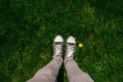 Jambes adolescentes dans des espadrilles sur l'herbe luxuriante de printemps Image libre de droits