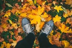 Jambes adolescentes dans des espadrilles sur la terre avec des feuilles d'automne Photos stock