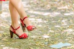 jambes croisées sinueuses de plus de la femme 40 Photographie stock libre de droits
