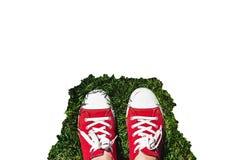 Jambes dans de vieilles espadrilles rouges sur l'herbe verte Vue de ci-avant La Co Image libre de droits