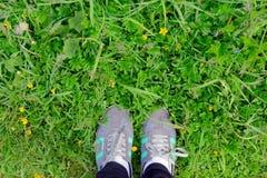 Jambes dans des espadrilles sur l'herbe Photo stock