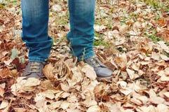 Jambes dans les bottes ou les sneackers, marchant le long des feuilles d'automne en parc d'automne L'homme marche Photographie stock