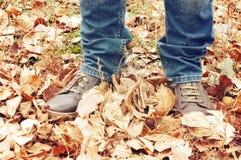 Jambes dans les bottes ou les sneackers, marchant le long des feuilles d'automne en parc d'automne L'homme marche Photographie stock libre de droits