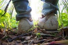 Jambes de femme dans des espadrilles Photographie stock libre de droits