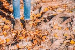 Jambes de femme dans les bottes sur des feuilles d'automne image stock