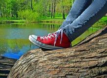 Jambes de fille se reposant sur le tronc d'arbre Images stock